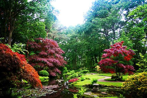 Fondos de pantalla jardines japoneses imagui for Arboles japoneses para jardin